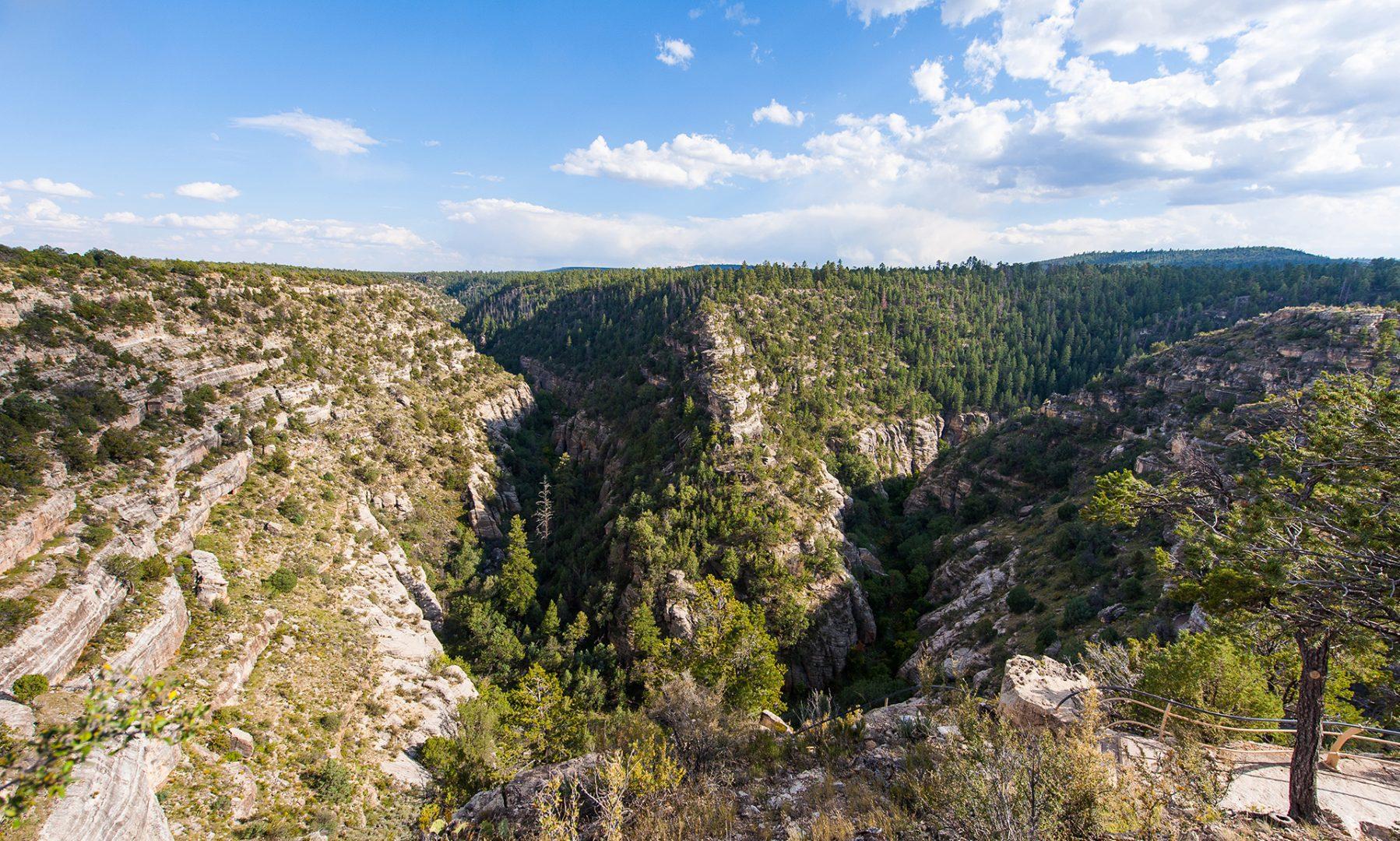 interior Walnut Canyon banner image